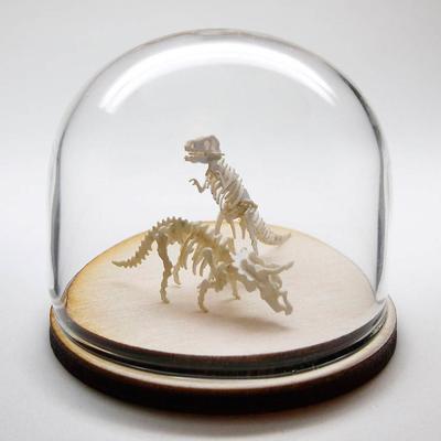 Tinysaurs squelettes papier dinosaure